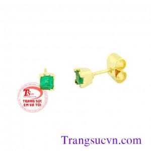 Hoa tai đá quý Emerald