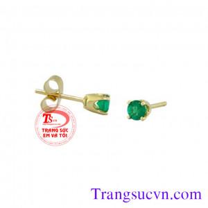 Nụ Emerald tròn vàng