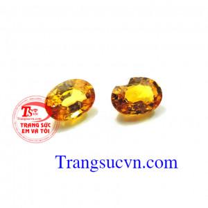 Cặp sapphire vàng làm hoa tai