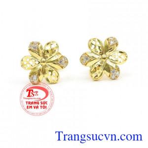 Hoa tai bông hoa vàng