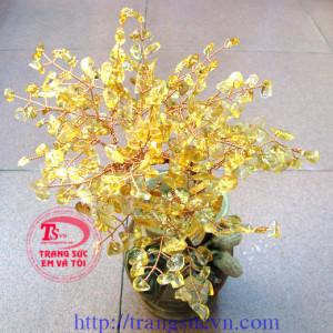 Cây Thạch Anh Vàng Doanh Nhân
