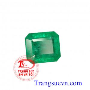 Emerald thiên nhiên Colobia